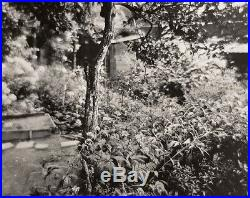 1955/80 Original JOSEF SUDEK Silver Gelatin Photograph BOTANICAL GARDEN Czech