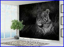 Black and White Tiger sat in grass Nature wallpaper photo wall mural (14751945)