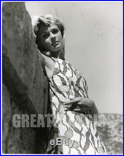 Candice Bergen Young Fashion Model 1967 Vintage Oversize Photograph Peter Basch
