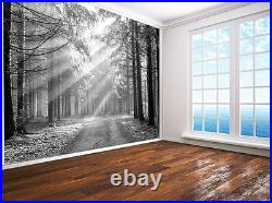 Forest Nature landscape photo Wallpaper wall mural (7199901) black and white