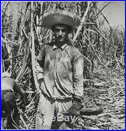 Jack DELANO Sugar Cane Worker, Puerto Rico, 1946 / PIX / Vintage / STAMPED/ FSA