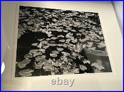 Michael A. Smith / Silver Gelatin Print / Vancouver Island / 1975 / Signed