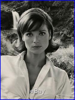 Mod Italian Beauty Elsa Martinelli Large Format Vintage 1963 Rampage Photograph