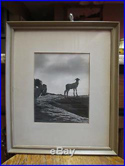 Two Vintage Black & White Photographs One By George Dodge
