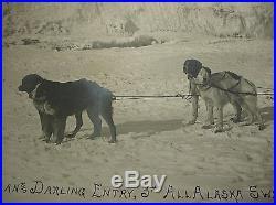 Vtg HUGE 1910 LOMEN BROS 3rd ALL ALASKA SWEEPSTAKES Scotty ALLAN Dog Sled PHOTO